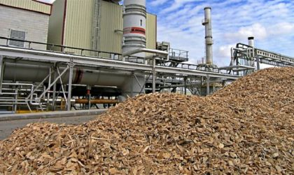 Agroindustrias San Jacinto obtiene concesión definitiva para central térmica