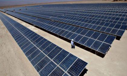 Construcción de planta de energía solar Rubí muestra avance del 66%