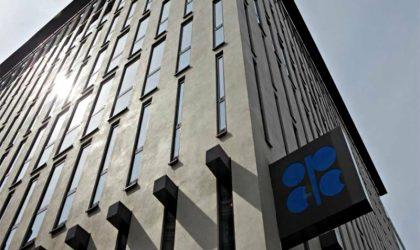 OPEP: Producción de petróleo se incrementó y alcanzó máximos de 2017