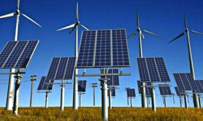 Energías renovables se convertirán en las más económicas en los próximos tres años