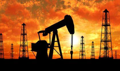 AIE verifica al alza provisiones de demanda de petróleo en el mundo para el 2017