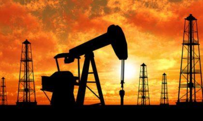 PERUPETRO: Producción de hidrocarburos líquidos sobrepasa los 133,000 bpd en julio