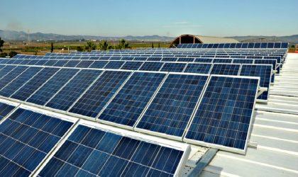 Se evalúa potenciar energía renovable a través de tres plantas solares en Arequipa