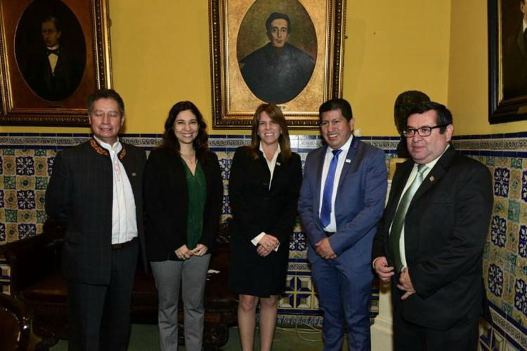 MEM anuncia nueva Viceministra de Energía