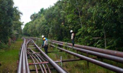 Petroperú: Modernización del Oleoducto Norperuano necesita una inversión de USD 800 millones