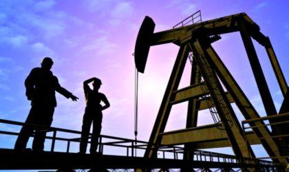 Cifras de Perupetro mostraron 43 mil barriles diarios de producción de petróleo en septiembre