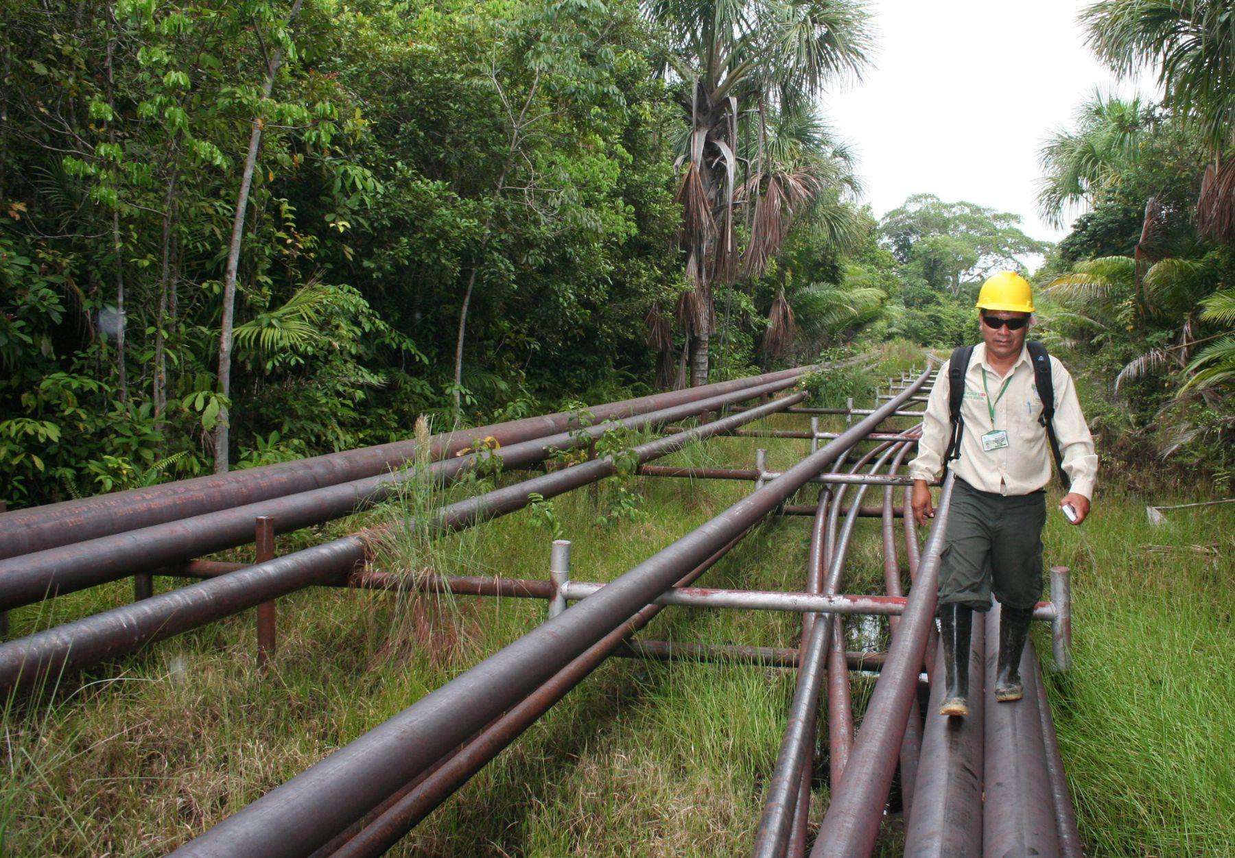Reactivación de producción petrolera reduciría tarifas de oleoducto