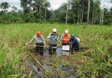 Propuesta delMinamy MEM logran consenso en normativa ambiental